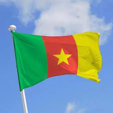 drapeau - Cameroun