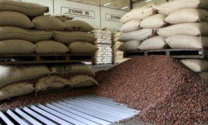 Conseil café-cacao - CCC - agricuture - alimentaire - industrie