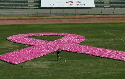 OMS - CIRC - ruban rose - cancer - sein - maladie - santé - sciences